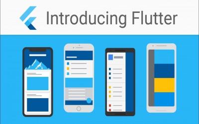 Bagaimanakah Start Awal Belajar Bahasa Pemrograman Flutter dan Haruskah Belajar Flutter di Tahun 2021 Ini?